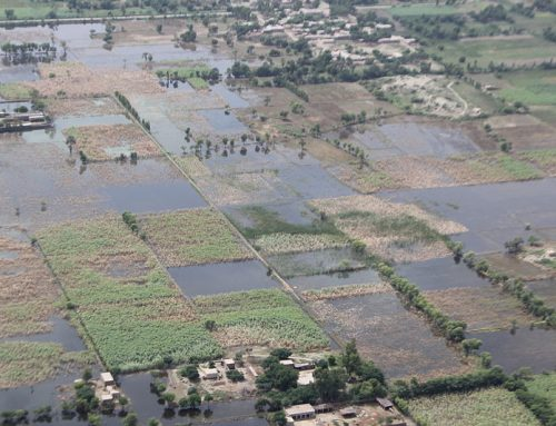 LEADing the Way in Implementing New Adaptive Practices to Combat Climate Vulnerability