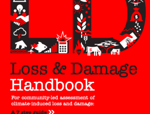Handbook for Loss and Damage Assessment