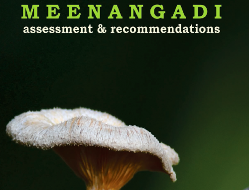 Carbon Neutral Meenangadi – Assessment and Recommendations